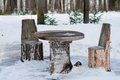 Table and chairs made of tree trunks picnic in winter forest Royalty Free Stock Photography