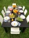 Table for garden party Royalty Free Stock Image