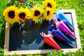 Table is in the meadow with school bags, school day Royalty Free Stock Photo