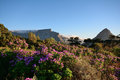 Table mountain and lions head cape town a view of in south africa Stock Photography