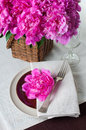 Table setting with pink peonies vintage cutlery and brown table beautiful tablecloth Stock Photos