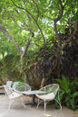 Table with three chairs under exotic tree romantic outdoor restaurant in pondicherry india white and Stock Images
