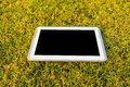 Tablet in field digital grass shows freedom of working Royalty Free Stock Images