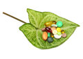 Tablets and pills on green leaf Royalty Free Stock Image