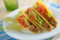 Tacos with ground beef and vegetables Stock Photos