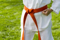 Tae kwon do student practicing in the park Royalty Free Stock Images