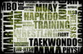 Tae Kwon font Photos stock