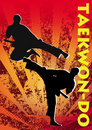 Taekwon-do poster. Vector. Royalty Free Stock Photos