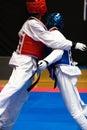 Taekwondo Royalty Free Stock Photo