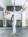 Taekwondo an image of a martial arts master Royalty Free Stock Photography