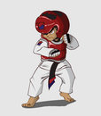 Taekwondo martial art vector and illustration Stock Photography