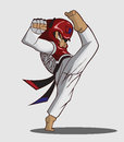 Taekwondo martial art vector and illustration Royalty Free Stock Photos