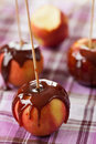 Taffy apples on a stick Royalty Free Stock Photo