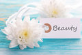 Tag with beauty on a turquoise board white blossoms Stock Images