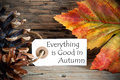 Tag with everything is good in autumn as background Stock Photo