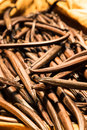 Tahiitan vanilla beans Royalty Free Stock Photo