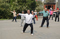 Tai chi in china chinese people doing the morning location shichahai park beijing Royalty Free Stock Images