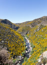 Taieri gorge railway on side of ravine with bridge track tourist runs alongside a bridges and tunnels its journey up the valley Royalty Free Stock Photography