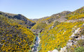 Taieri gorge railway on side of ravine with bridge track tourist runs alongside a bridges and tunnels its journey up the valley Stock Photography