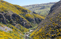 Taieri gorge railway on side of ravine with bridge track tourist runs alongside a bridges and tunnels its journey up the valley Royalty Free Stock Images