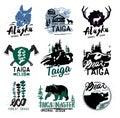 Taiga logo sign. Forest logotype. Bear taiga emblems. Vintage Camping logo.