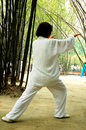 Taiji Quan Stock Photo
