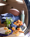 Tailgating picnic Stock Photos