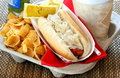 Take Our Tray with Hot Dog Meal Royalty Free Stock Images