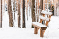 Take a rest. Soo cold! Royalty Free Stock Photo