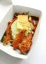 Takeaway ethnic asian rice dish Royalty Free Stock Photos