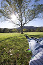 Taking it easy Royalty Free Stock Photo