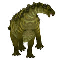 Talarurus Dinosaur over White Royalty Free Stock Photo