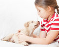 Talking to a puppy little girl Stock Images