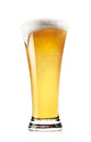 Tall glass of light beer with foam Royalty Free Stock Photo