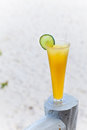 Tall glass of refreshing beverage Royalty Free Stock Photography