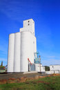 A tall grain elevator large busy to collect and ship in grass valley in eastern oregon under clear blue skies Royalty Free Stock Photography