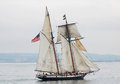 Tall ship lynx a square topsail schooner she is an interpretation of an american letter of marque vessel of the same name from a Stock Image