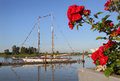 Tall ship schooner steveston flowers frame a masted moored at a dock in harbor for a maritime festival british columbia canada Stock Photo