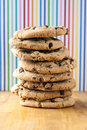 Tall stack of chocolate chip cookies Royalty Free Stock Photo