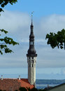 Tallinn town hall the distinctive spire of s medieval seen from toompea hill Royalty Free Stock Photos