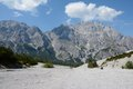 Talus and peaks in wimbachtal valley in alps in germany trees Stock Images