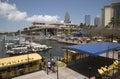 Tampa downtown waterfront area. Florida USA