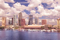 Tampa Florida Skyline Royalty Free Stock Photo