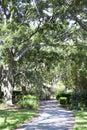 Tampa Park Royalty Free Stock Photo