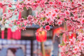 Tanabata festival sakura and red bamboo lantern decoration in Stock Images
