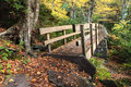Tanawha bridge in autumn blue ridge parkway nc a pedestrian footbridge along the trail helps hikers traverse through fragile Royalty Free Stock Photo