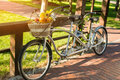 Tandem bicycle in the park. Royalty Free Stock Photo