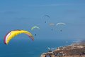 Tandem paragliders at Torrey Pines Gliderport in La Jolla Royalty Free Stock Photo