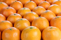 Tangerine fresh stacked in rows Royalty Free Stock Photography