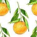 Tangerine fruit seamless pattern